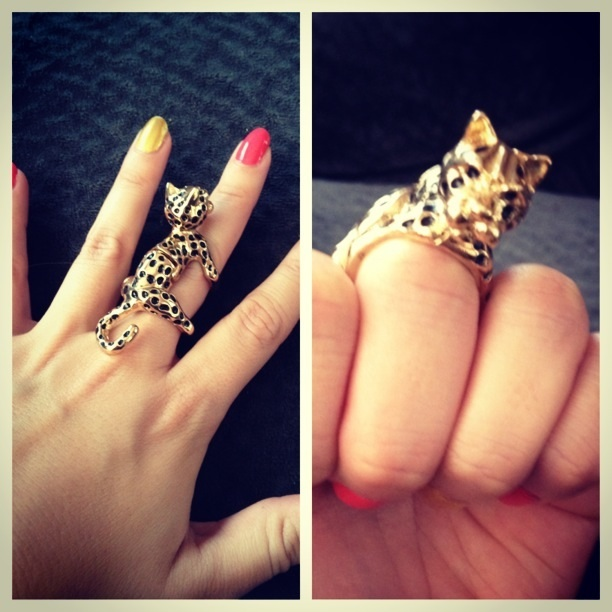Cheetah ring $8 from Charming Charley