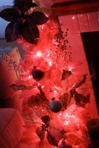 christmas15f (1 of 1)