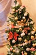 christmas15i (1 of 1)