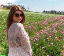 Flower fields16 (1 of 1)