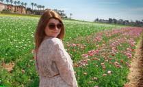 Flower fields18 (1 of 1)