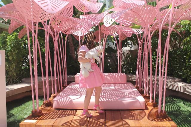 pink cabana (d)